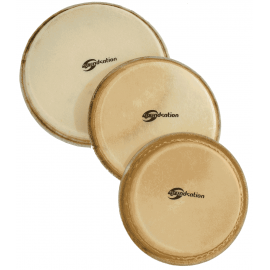 """Soundsation SDH-14 – Fata Djembe 14"""" - Music and More"""